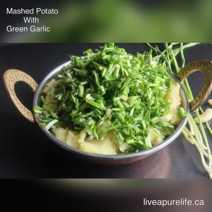 Mashed potato with green garlic lilu lasan bataka nu kachu live i am posting a recipe after long i went to india for a trip i have enjoyed a lot forumfinder Gallery